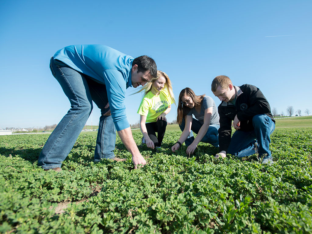 ag students in a field featured